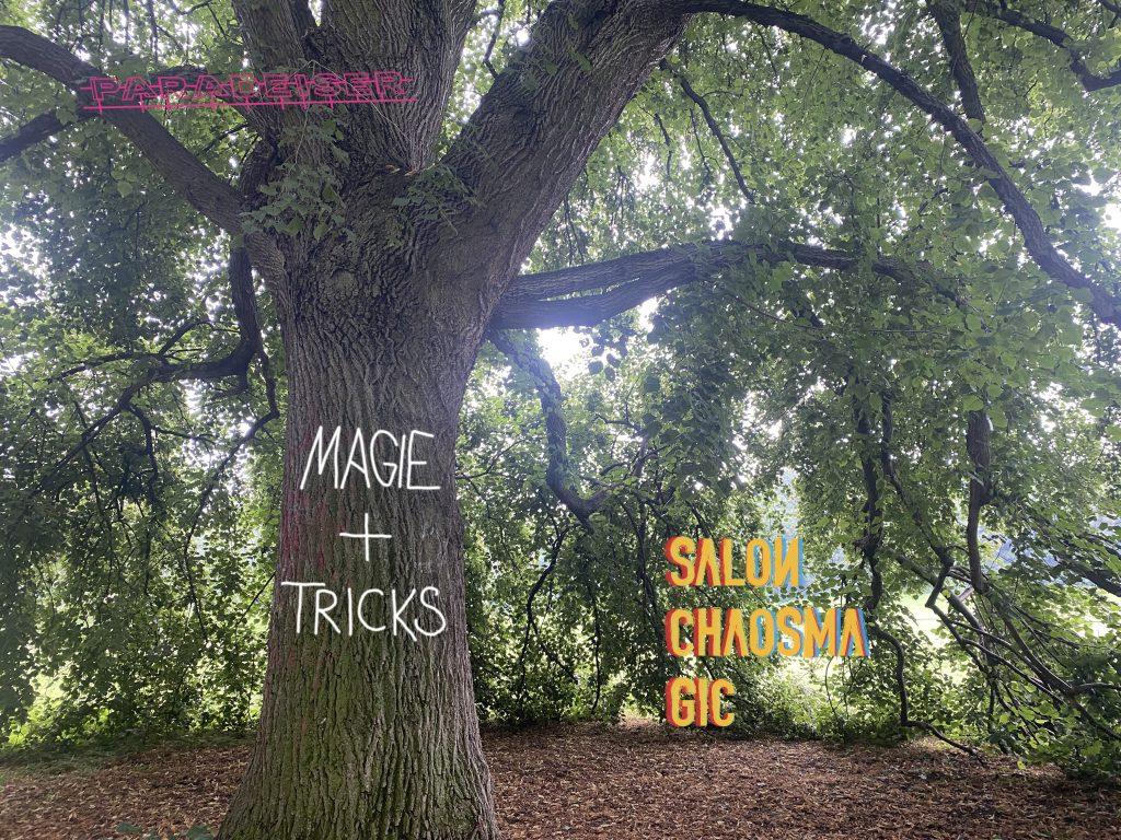 """Ein Baum mit überhängenden Ästen. Auf dem Stamm steht """"Magie + Tricks*, digital manipuliert, so als hätte es jemand auf den Stamm gekritzelt. Dazu die Logos Paradeiser und Salon Chaosmagic."""
